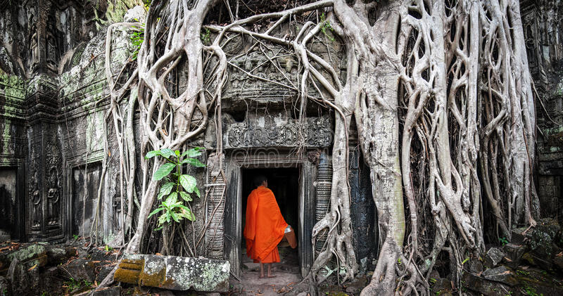 Munk i Angkor Wat Cambodia En khmertempel för Ta Prohm royaltyfri bild