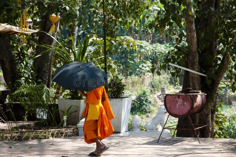 Munk - Luang Prabang - Laos arkivbild