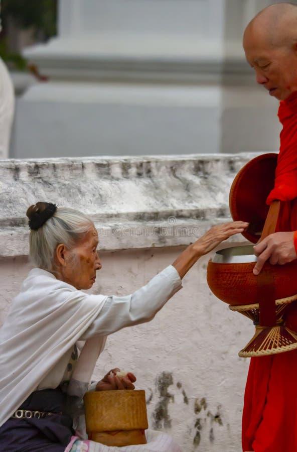 Munk som samlar att erbjuda i Luang Prabang Laos royaltyfri bild