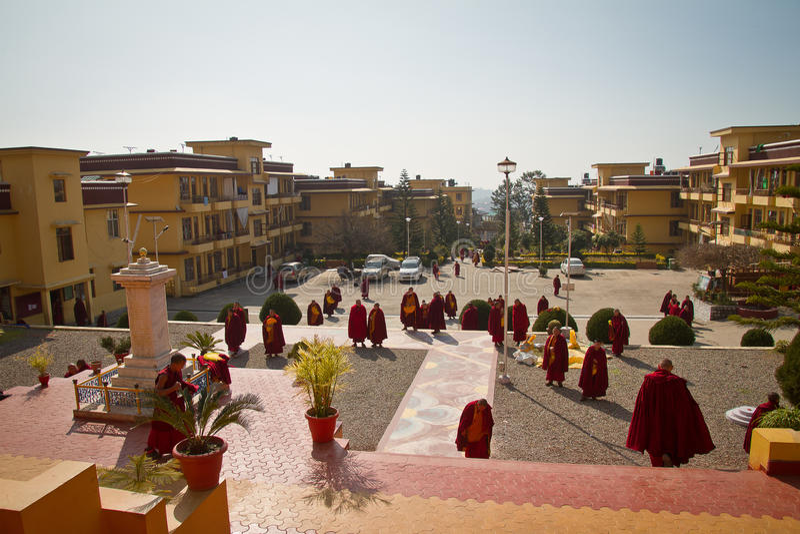 Munkar av den Gyuto kloster, Dharamshala, Indien arkivbild