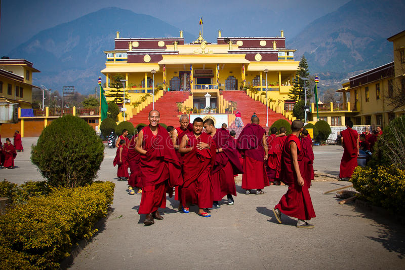 Munkar av den Gyuto kloster, Dharamshala, Indien arkivfoto
