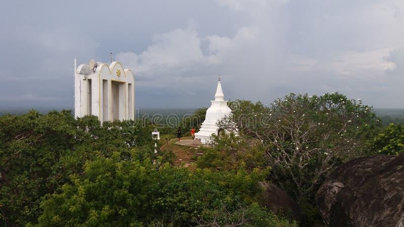 2500 munkar som bo i en tempel i Sri Lanka royaltyfria bilder