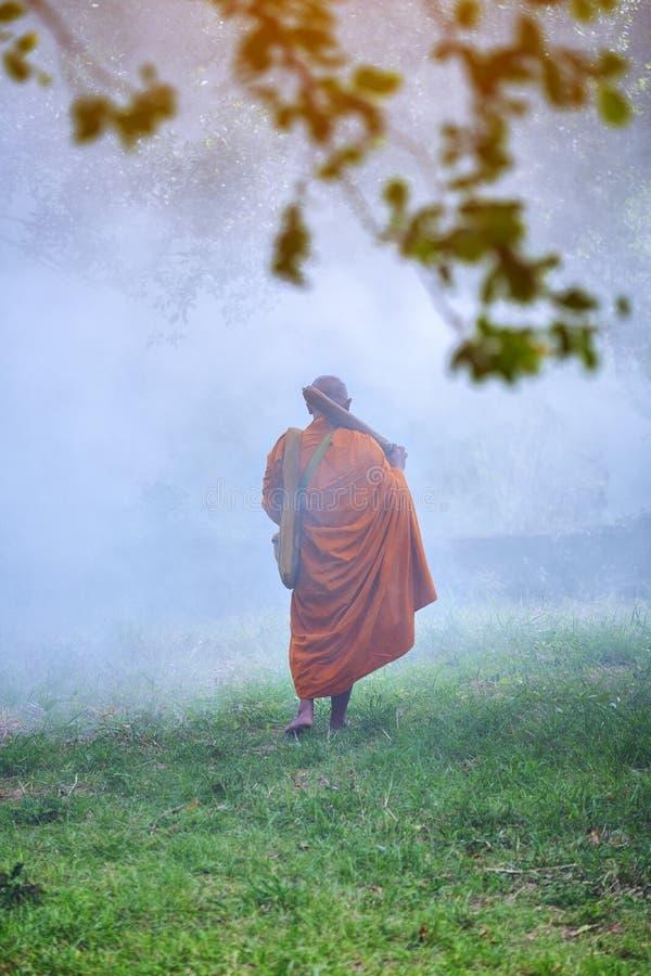 Munken går i skogen, den buddistiska templet, novis som munken gick royaltyfri foto
