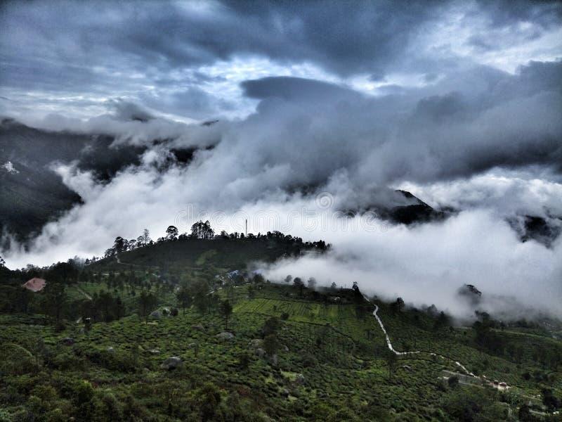 Munnar - рай в God& x27; s имеет страну стоковая фотография