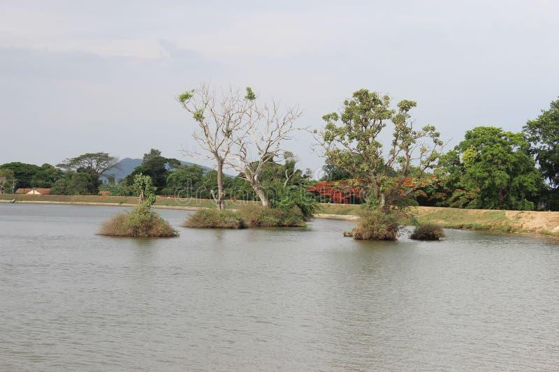 Munnar obrazy royalty free