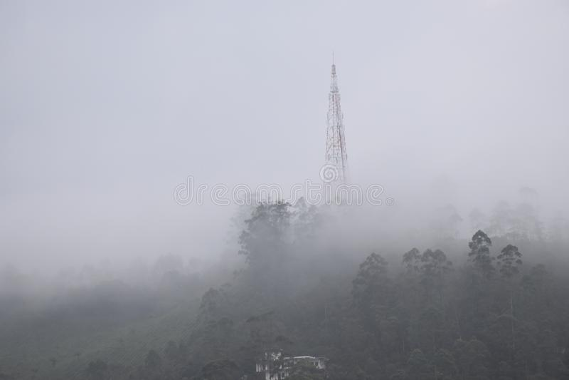 Munnar, Kerala stockbild