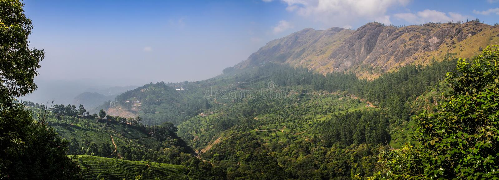 Panoramic view of the green lush tea hills and mountains around Munnar, Kerala, India. Munnar is a town and hill station located in the Idukki district of the royalty free stock photography