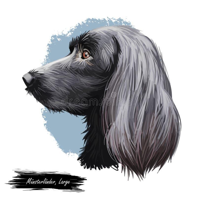 Munsterlander grande, retrato digital originado alemán del ejemplo del arte del perro Primer del perfil del vástago del purasangr stock de ilustración