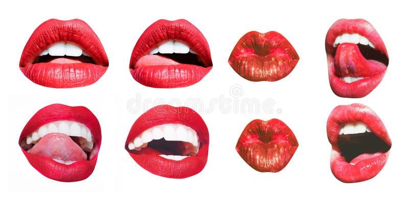 Munsymbol Sexiga kvinnliga kanter med röd läppstift som isoleras på vit Vita tänder, tunga av härliga unga kvinnor arkivfoton