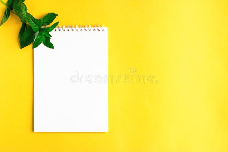Munt en open Blocnote op gele achtergrond stock afbeeldingen