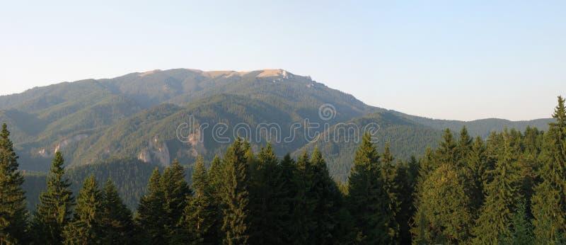 Muntele Mare fotografering för bildbyråer