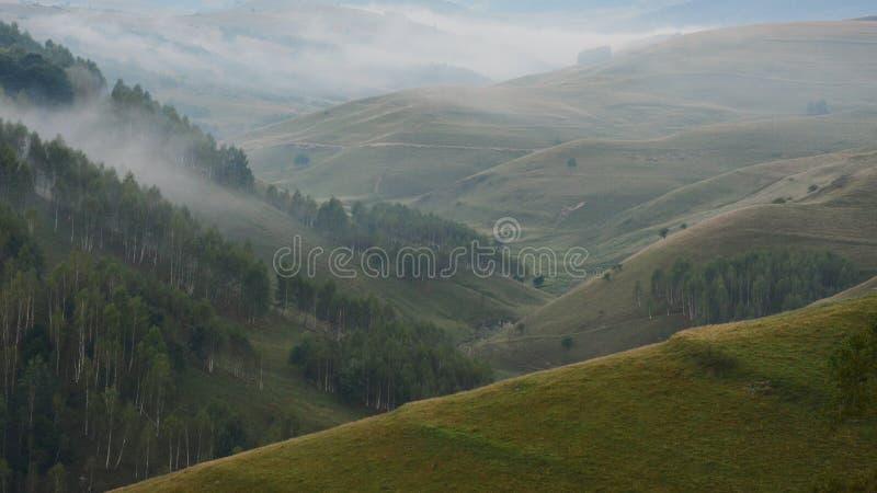 Muntii Trascau. Foggy morning in Muntii Trascau royalty free stock photo