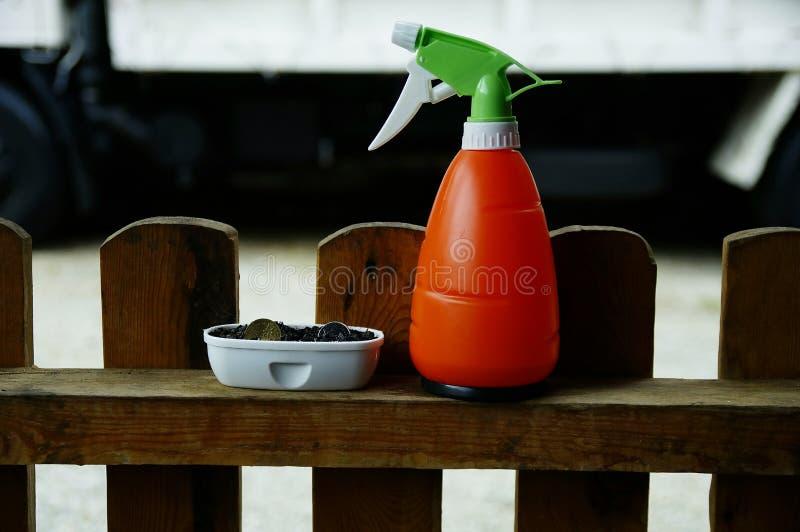 Muntstuk in de kinderdagverblijfpot met watervoorziening naast de pot stock foto