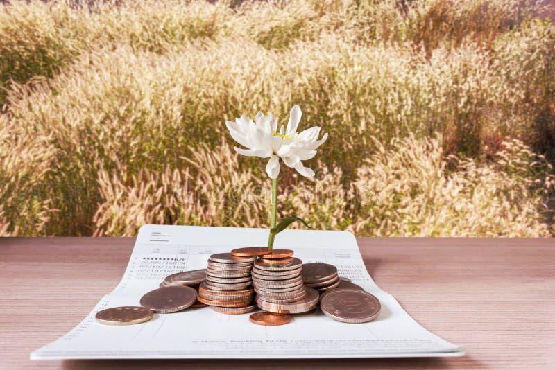 Muntstukken en bloem op boekbankrekening en de achtergrond van het grasgebied royalty-vrije stock afbeelding