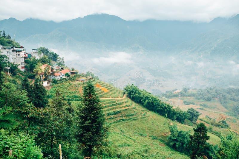 Muong Hoa Valley Terraced risfält i Sapa, Vietnam fotografering för bildbyråer