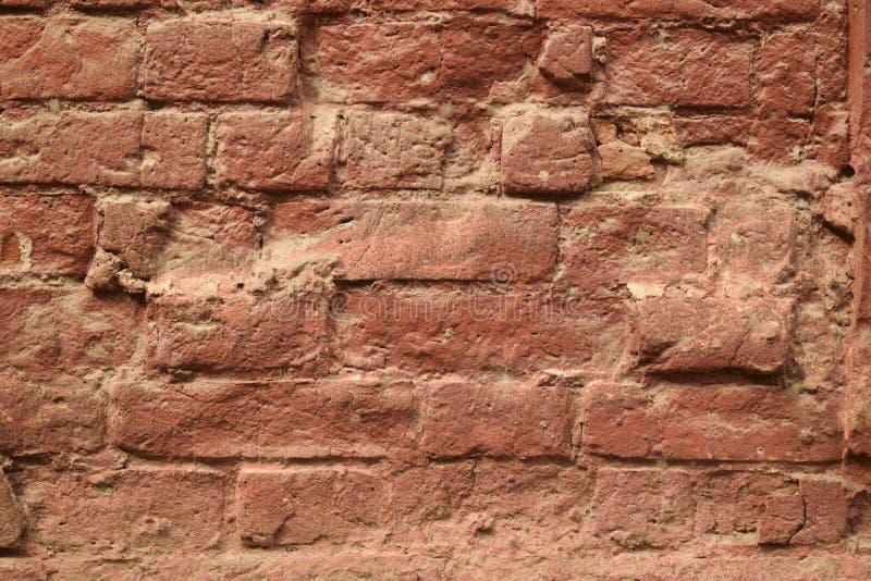 Download Mur 24 image stock. Image du brique, dessin, rose, conception - 77158317