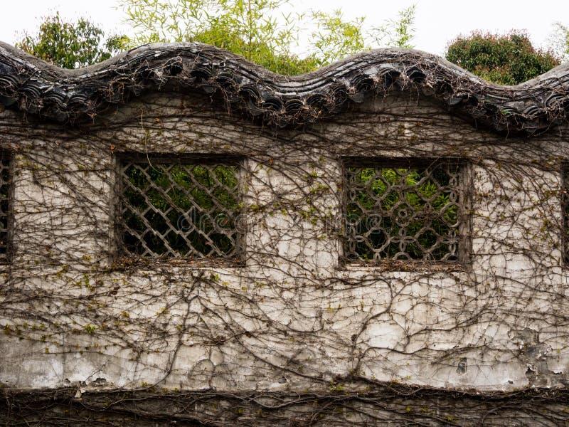 Mur chinois de jardin couvert de vignes photographie stock libre de droits
