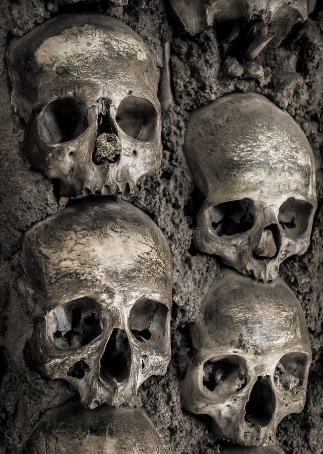 Mur complètement des crânes et des os images libres de droits