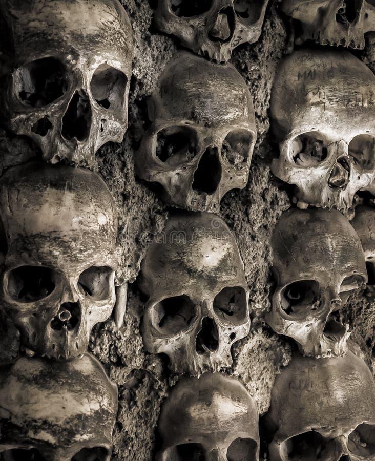 Mur complètement des crânes et des os photographie stock