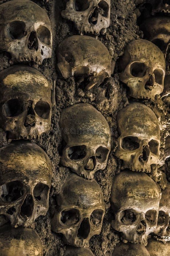 Mur complètement des crânes et des os photo stock