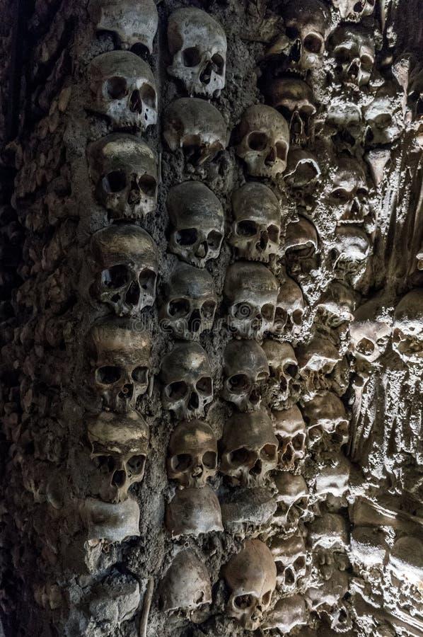 Mur complètement des crânes et des os image stock