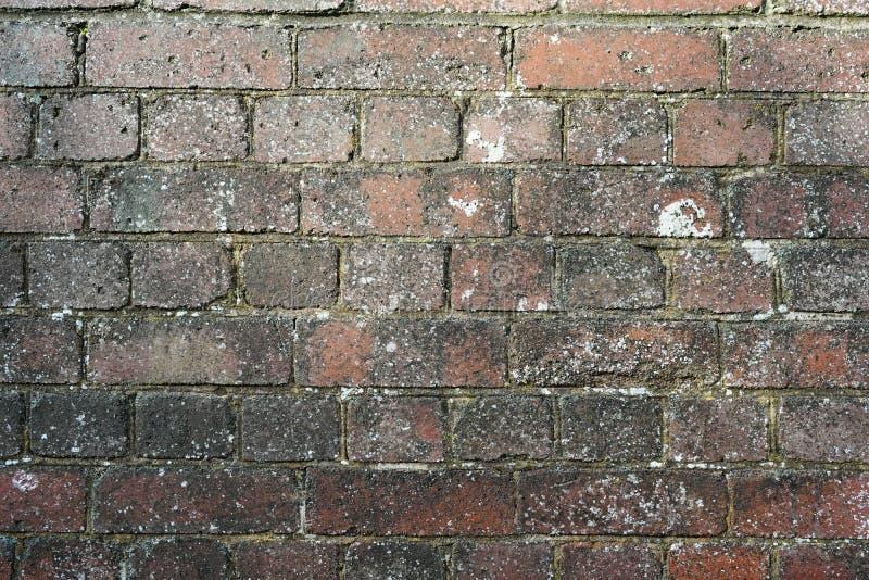 Mur d'arrière-plan en briques vieilles et sales photographie stock