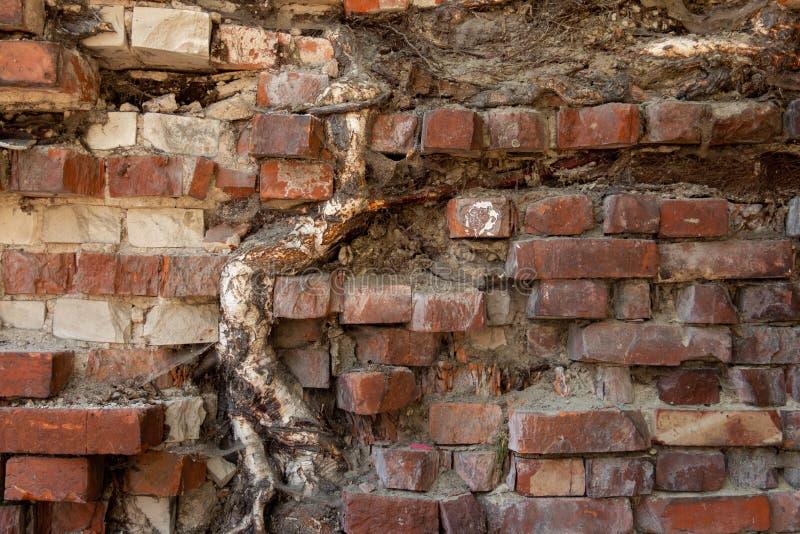 Mur de béton et de brique avec la texture de plâtre photos stock