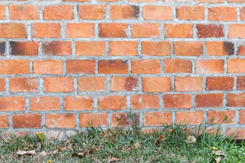 Mur de briques avec l'herbe sur le plancher images libres de droits