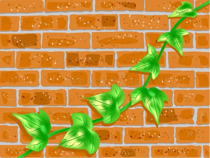 Mur de briques avec la vigne verte illustration de vecteur