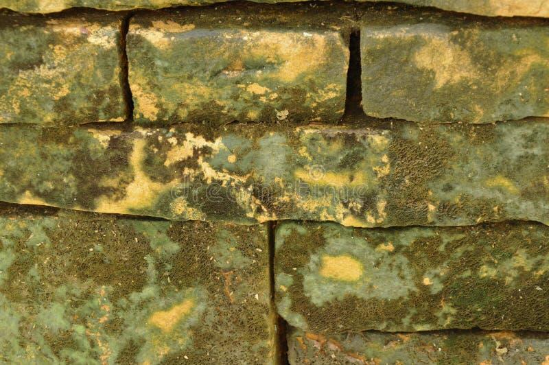 Mur de briques de bâtiment avec le fond et la texture de tache image libre de droits