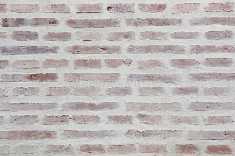 Mur de briques blanchi Texture de fond photo libre de droits