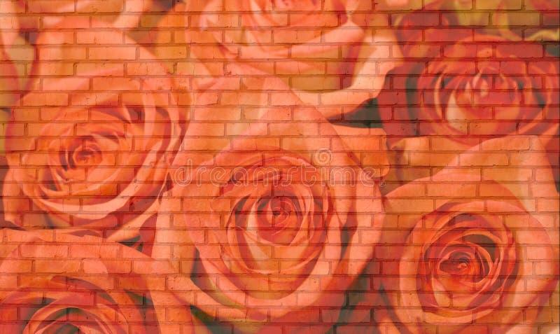 Mur de briques de roses photographie stock libre de droits