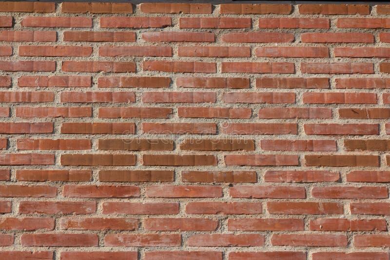 Mur de briques et mortier rouges photos stock