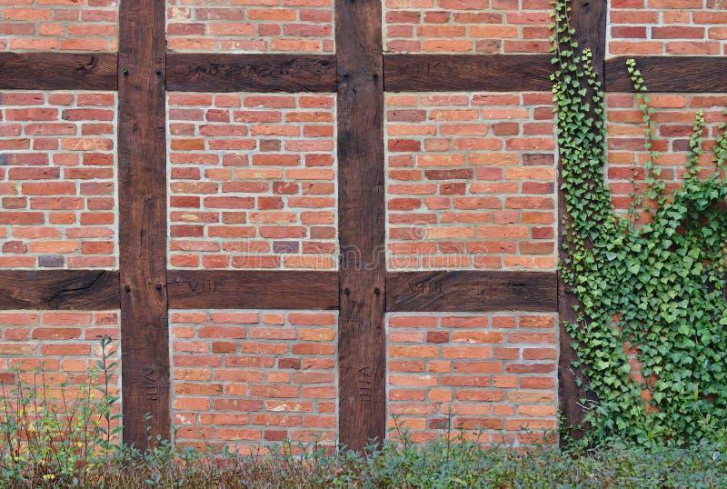mur de briques rouge Bois de construction-encadré en partie couvert de lierre photographie stock