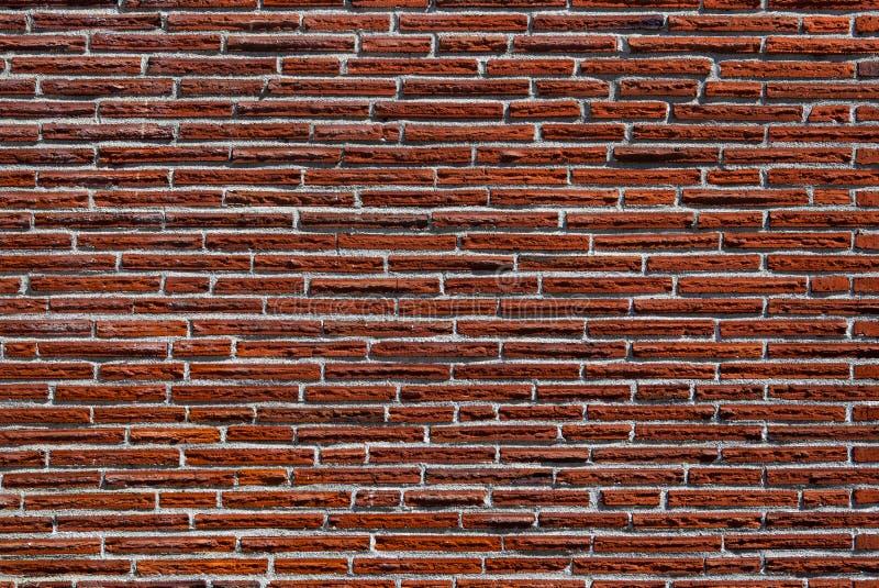 Mur de briques rouge maigre images libres de droits