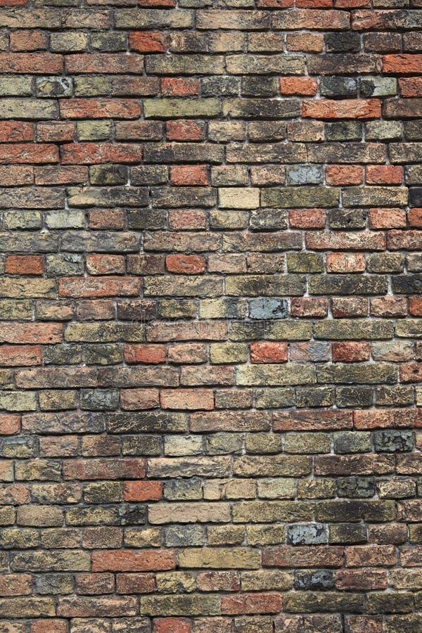 Mur de briques vieux Bruges photographie stock libre de droits