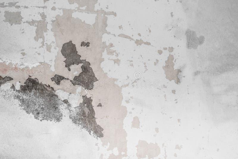 Mur de ciment blanc avec le fond de texture de moule, fente, grunge, l'espace de copie images libres de droits