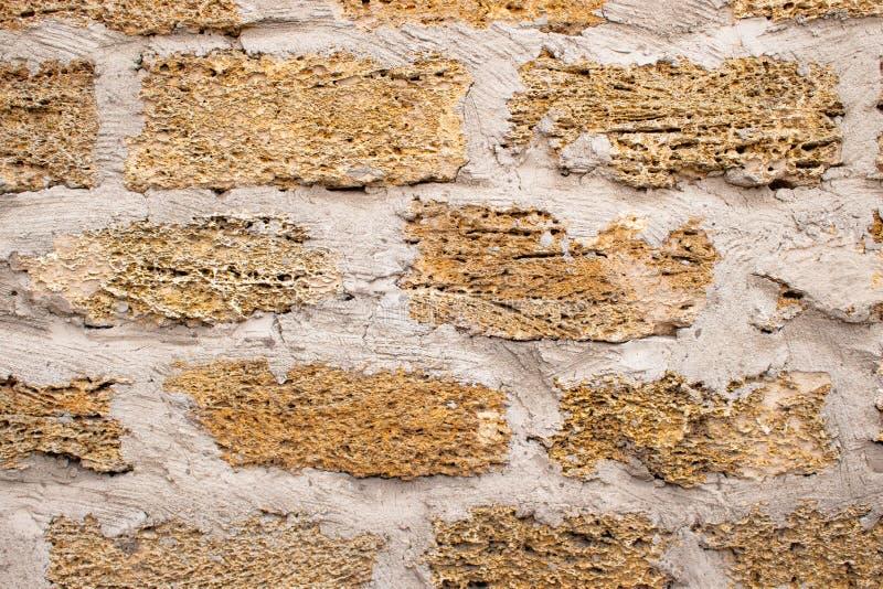 Mur de fond avec la roche de coquille Vieux mur Chaux de texture images libres de droits