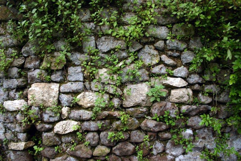 Mur de jardin chez Ninfa, près de Rome images libres de droits