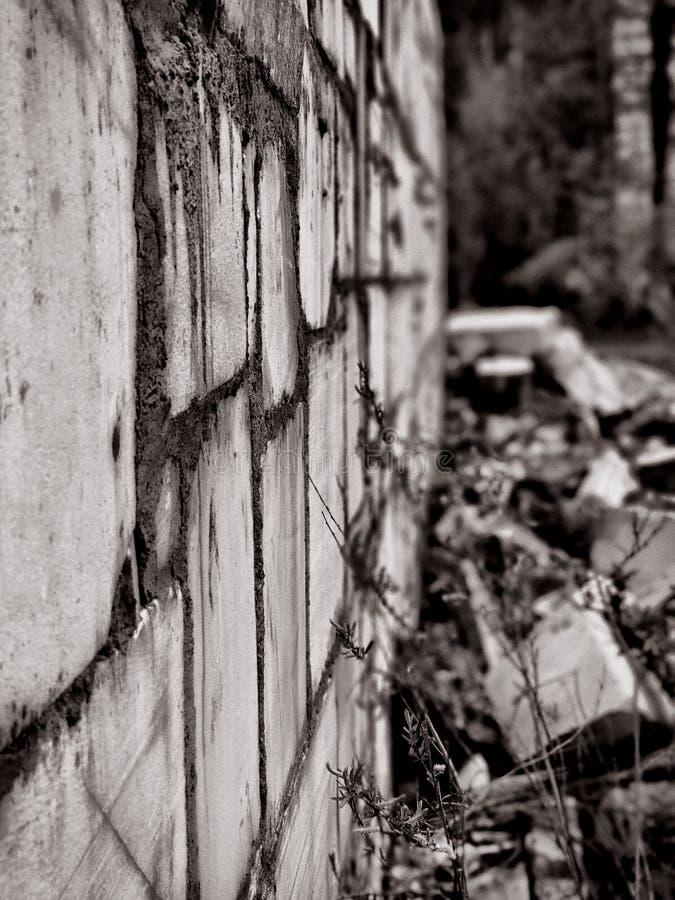 Mur de marbre image stock