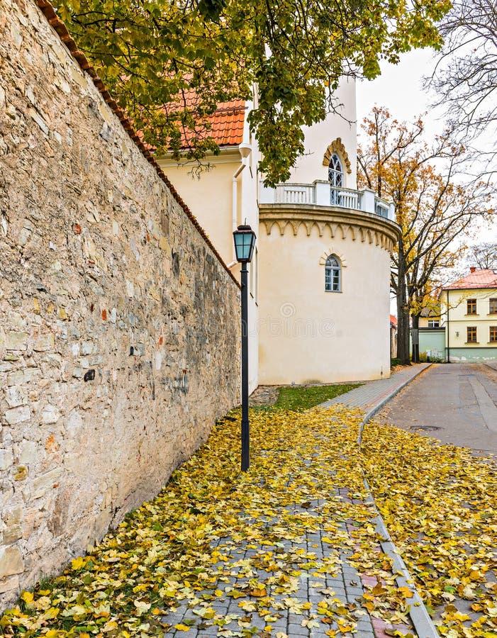 Mur de palais médiéval dans Cesis, Lettonie, l'Europe images libres de droits
