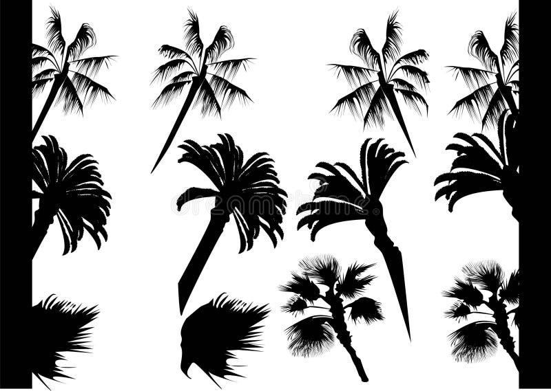 Mur de _Palms de silhouette photos stock