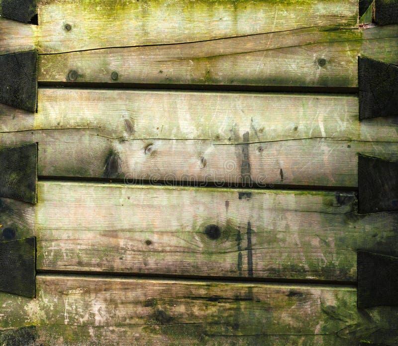 Mur de vieux rondins gris frangés foncés avec de la mousse verte photo libre de droits