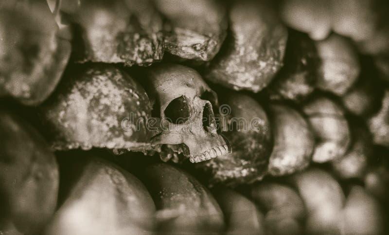 Mur des crânes image stock