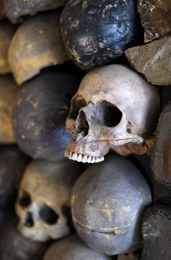 Mur des crânes photo libre de droits