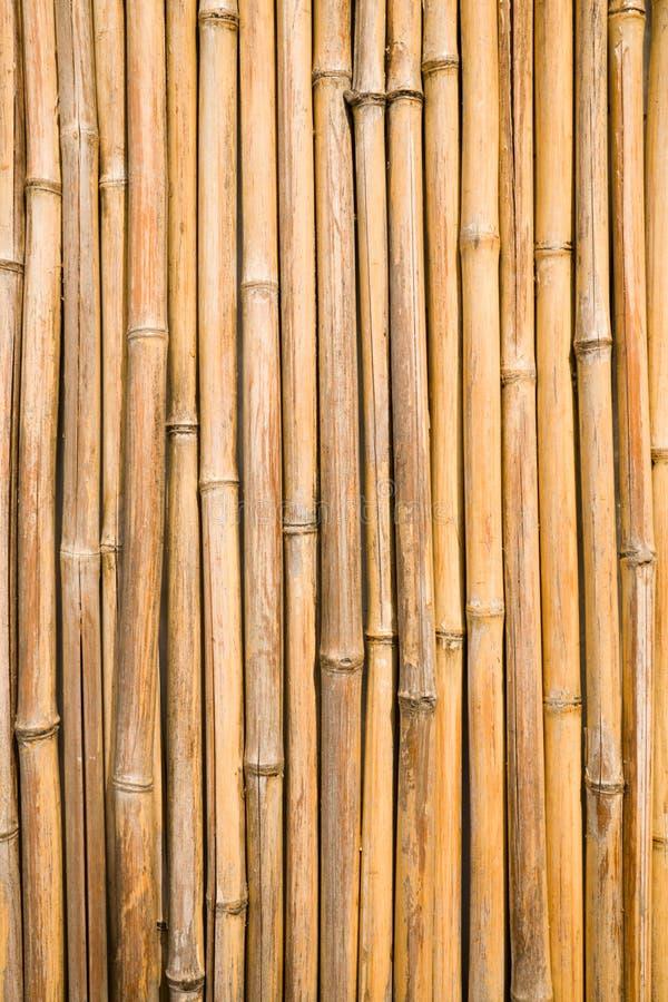 Mur en bambou. images libres de droits