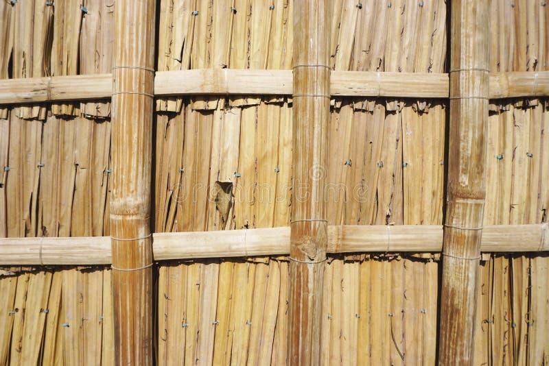 Mur en bambou tissé avec la texture horizontale de fond d'architecture de grille carrée image libre de droits