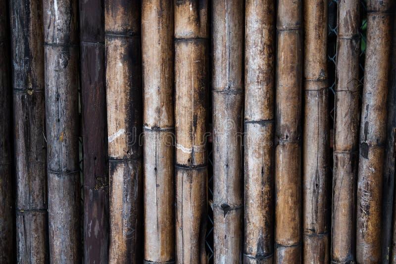 Mur en bois en bambou image libre de droits
