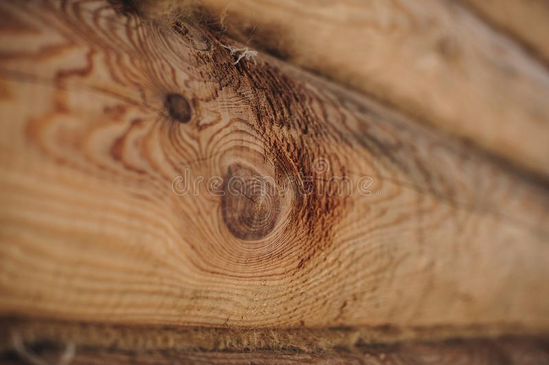 Mur en bois des logarithmes naturels photo stock