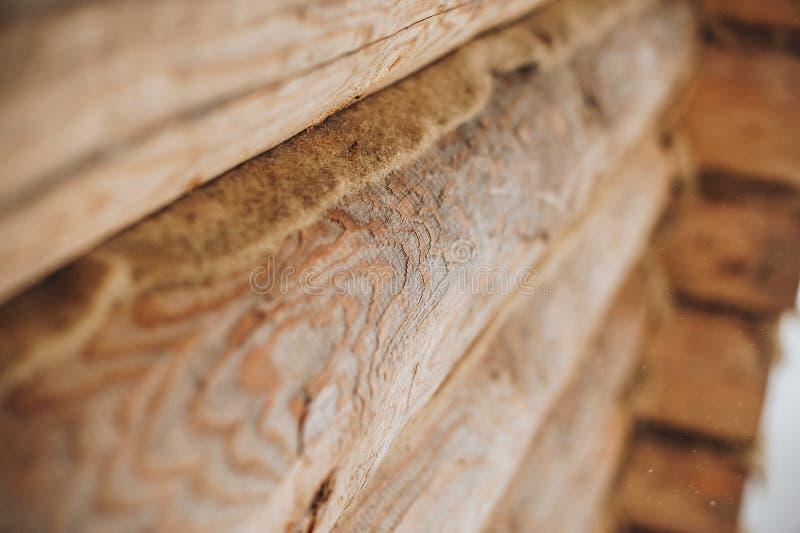 Mur en bois des logarithmes naturels image libre de droits